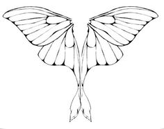 Luna Moth Wings by junkyardxxxdog.deviantart.com on @deviantART