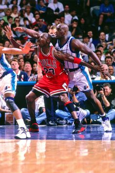 Chicago Bulls, Jordan Bulls, Jordan 23, Charlotte Hornets, Basketball Skills, Basketball Court, Michael Jordan Photos, Nba Eastern Conference, Jeffrey Jordan