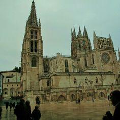 Camomo de Santiago.  Burgos monumental