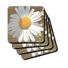 White Daisy Flower Wood Design Flowers Flower Photography - Coasters