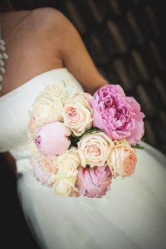 Pion och ros i underbart rosa
