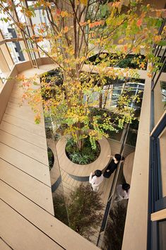 nendo's timber-grid tokyo building tops out with a sky forest terrace - Modern Commercial Architecture, Architecture Office, Landscape Architecture, Architecture Design, Landscape Design, Exterior Design, Interior And Exterior, Terrace Building, Eco Buildings