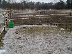 Methods to reduce mud in pastures (think we could use a bit of help right now!) - The article is a little thick but has great information! Riding Stables, Horse Stables, Horse Barns, Horse Paddock, Barn Stalls, Horse Care Tips, Horse Property, Horse Ranch, Dream Barn