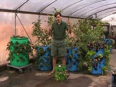 3D vertical barrel gardening.  Grow 40 plants in a 55-gallon barrel or 15 plants in a 30-gallon barrel and you can stack them for even more growing power for smaller spaces.
