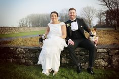 Aoife and Gary with their wedding dogs. Wedding Photography by Marriage Multimedia Wedding Dogs, Multimedia, February, Marriage, Wedding Photography, Bride, City, Wedding Dresses, Mariage