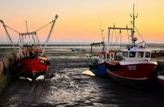 Seafood #Traceability: The #BusinessCase for Better Data - http://www.triplepundit.com/2014/04/seafood-traceability-business-case-better-data/