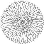 stock.xchng - geometric flower 27 (stock illustration by jmjvicente)