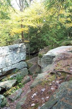 Bilgers Rock Park, Clearfield County Pennsylvania, where the Rishell family held their family reunion.