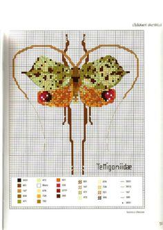 Gallery.ru / Foto # 56 - morabito Insectos - Tatasha