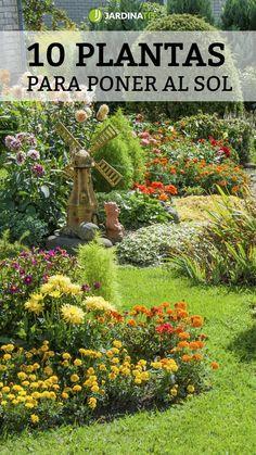 House Plants Decor, Plant Decor, Garden Nursery, Outdoor Plants, Backyard Patio, Garden Sculpture, Garden Design, Landscape, Nature