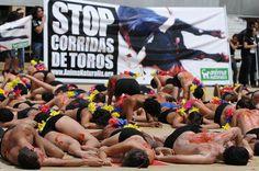 Colombia.    Activistas semidesnudos formaron la palabra STOP por la abolición de la tauromaquia.