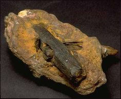 This interesting photograph is of a hammer found in Texas in 1934. It's iron head and wooden handle are solidified in sandstone. Metallurgical studies show that it was constructed of a type of iron that could not have been made under present atmospheric conditions. It is believed that before the flood our atmosphere was compressed to approximately twice its current density, and no ultraviolet radiation.
