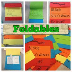 #42 Foldables                                                                                                                                                                                 Mais