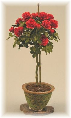 Gorgeous red rose tree by Carol Wagner. Nobody makes better roses than Carol Wagner.