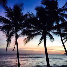 Trinity Beach = Paradise in anyone's language!www.trinitybeachfront.com.au #trinitybeach dom_xoe #cairns
