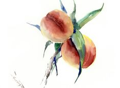 Buy Peaches on the Tree, Watercolor by Suren Nersisyan on Artfinder. Discover thousands of other original paintings, prints, sculptures and photography from independent artists.