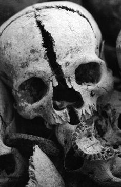 Skulls and Bones Skull Reference, Skull Anatomy, Skull Island, Human Skull, Skull Tattoos, Gothic Art, Mad Max, Skull And Bones, Skull Art