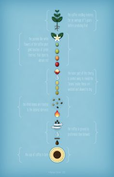 The Jellybean Tree: Coffee: An Infographic