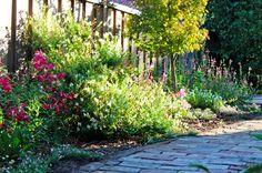 86 Best Garden: Birds and Bees images in 2015   Garden