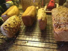 Homemade Ezekiel bread: made of wheat, barley, beans, lentils, and millet. Low Carb Recipes, Bread Recipes, Real Food Recipes, Yummy Food, Healthy Recipes, Healthy Breads, Tasty, Ezekiel Bread, Eating Clean