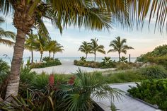 Beach Backyard to love - Craig Reynolds Landscape