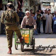 That is the daily humiliation the oldery palestinians get from the coward zionsts