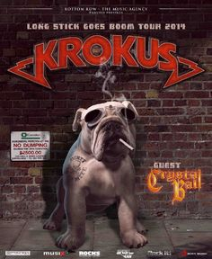 """""""Dirty Dynamite"""" is the studio album by KROKUS. It was released on March Krokus Band, Rock Bands, New Music Releases, Album Releases, Heavy Rock, Metal Albums, Vinyl Music, Thrash Metal, Music Mix"""