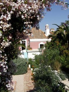 The hanging gardens of the Algarve