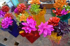 Sprayed neon on succulents Jackie's   #wedding #event  #floral
