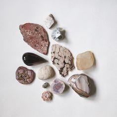 pyrite | conglomerate | jasper | quartz | petrified driftwood | agate