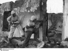 "1942-1943""Ich verlor aus Feigheit den Kopf""  -  ""I lost because of cowardice head"""