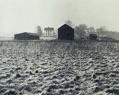 """Farm, Madison Township, New Jersey,"" 1966. Selenium toned gelatin silver print. Copyright © George A. Tice (American, born 1938)."