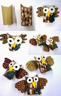 Owl with toilet paper roll