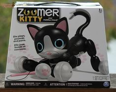Mommy Katie: Find Your Purrfect Friend with Zoomer Kitty