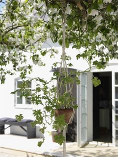 A 19th century Swedish home with an outdoor oasis