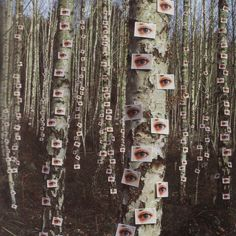 """Storm Thorgerson """"Eyes on Trees"""" from the album """"Wishville"""" by The Catherine Wheel - Beautiful Photos Storm Thorgerson, Foto Fantasy, Dark Fantasy, Arte Emo, Arte Obscura, Weird Dreams, Lose My Mind, Cursed Images, Aesthetic Pictures"""