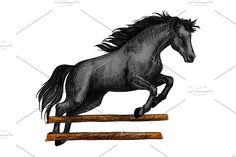 Horse jumping for equine horserace sport symbol Graphics Brown arabian mustang stallion running and jumping over barrier. Color horse vector sketch for eques by Vector Tradition SM