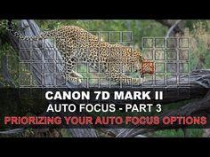 Canon 7D Mark II Auto Focus - Part 3/5: Prioritizing Your Autofocus Options - YouTube