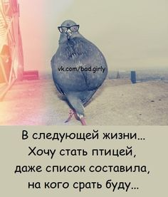 Диалоги Russian Humor, Funny Expressions, Clever Quotes, Funny Quotes About Life, Good Mood, In My Feelings, Sarcasm, Laughter, Inspirational Quotes
