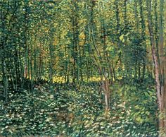 Trees and Undergrowth - Vincent Van Gogh