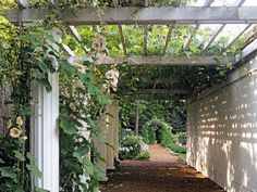 Learn more about traditional arches and pergolas with this gardening guide from HGTV.com