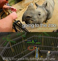 Who needs a zoo IRL? Not Scapers!  #RuneScape