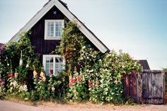 cottage garden with hollyhocks, curb appeal in Arild, Sweden Interior Exterior, Exterior Design, Style Cottage, Rustic Cottage, White Cottage, Cottage House, Cozy Cottage, Tiny House, Cabins And Cottages