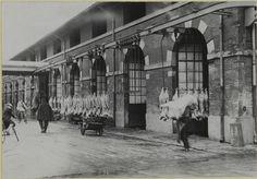 Les abattoirs de Toulouse en 1937 (Bibliothèque de Toulouse)