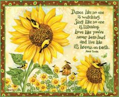 Summer Sayings - quotes, sunflower, saying, bird Sunflower Quotes, Sunflower Pictures, Sunflower Art, Sunflowers And Daisies, Sun Flowers, Dance Like No One Is Watching, Summer Quotes, Summer Sayings, Fabric Birds
