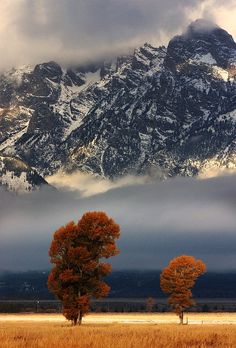 Late fall in the Tetons Valley. National Parks.
