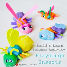 Build a bug! Such a fun activity for preschoolers to explore bugs this spring!