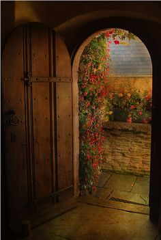 Rustic door to the garden - gorgeous