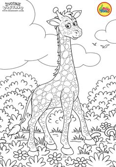 Animals Coloring Pages for Kids – Free Preschool Printables – Životinje Bojanke – Animal Coloring Books by BonTon TV Lds Coloring Pages, Printable Adult Coloring Pages, Animal Coloring Pages, Free Coloring, Coloring Books, Coloring Pictures For Kids, Coloring Sheets For Kids, Free Preschool, Preschool Printables