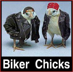 love it...hahaha!